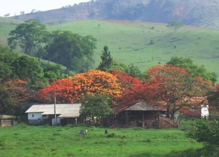 Vista da Fazenda dos Campos